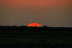Sunrise horison. Sunrise on the close horizon Stock Images