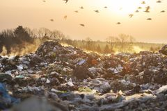 Poisonous fumes on the landfill. Sunrise on a huge trash can after a fire. Smoke and steam, poisonous gases and fumes escape from the waste of the city in the royalty free stock photo