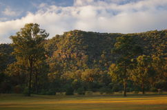 Sunrise in Hunter valley. Hunter valley gardens has a beautiful light early in the morning Royalty Free Stock Photography