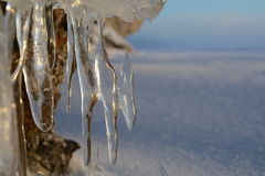 Sunrise. Icicles on the exit to the cave Royalty Free Stock Images