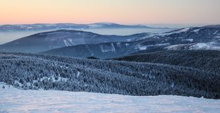 Free Sunrise In Snow Covered Jeseniky Mountains In Czechia During Nice Winter With Fog And Clear Sky. Wiew Of Czech Mountains, Trees An Royalty Free Stock Photography - 164139517