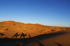 Free Sunrise In The Sahara Desert Marocco Stock Photo - 137115410