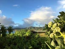 Sunrise In Winter At Kukui Heiau On Kauai Island, Hawaii. Stock Image