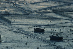 Sunrise of Infertidal Mudflat of Xiapu. China Royalty Free Stock Photo