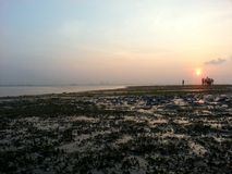 Sunrise on an island. Wide seagrass bed with people silhouette Stock Photo