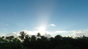 Sunrise on the island of zanzibar stock video footage