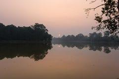 Sunrise at jungle Stock Image