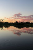 Sunrise in the jungle. Stock Photos