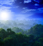 Sunrise in the jungles Royalty Free Stock Photos
