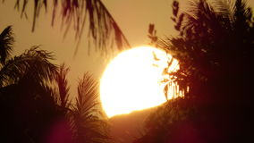 Sunrise at Kalama - Kailua, Hawai'i Royalty Free Stock Photo