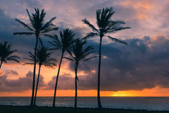 Sunrise Kapaa Beach Park - Kauai Stock Photography