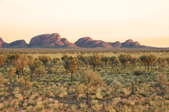 Sunrise at Kata Tjuta Stock Images