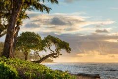 Sunrise Kauai. A beautiful sunrise in Kauai Hawaii Royalty Free Stock Photos