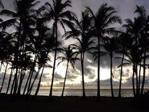 Sunrise in Kauai Royalty Free Stock Images