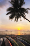 Sunrise with kayak boat and coconut palm trees on tropical beach background Stock Photos