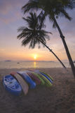 Sunrise with kayak boat and coconut palm trees on tropical beach background Stock Images