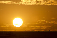 Sunrise  in Kenya Stock Image