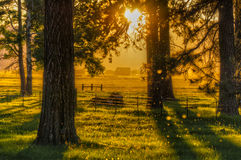 Sunrise in Klamath valley Royalty Free Stock Photography