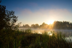 Sunrise on lake Royalty Free Stock Photo