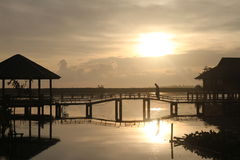 Sunrise on the lake. A sunrise on the lake and docks Stock Images