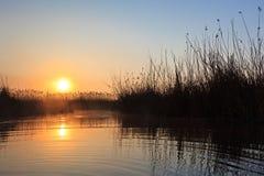 Sunrise lake. A beautiful sunrise on the lake among the reeds Royalty Free Stock Photos