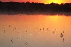 Sunrise and lake Royalty Free Stock Images