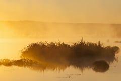 Sunrise at the lake Royalty Free Stock Photo