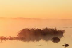 Sunrise at the lake Royalty Free Stock Photos