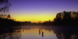 Sunrise on Lake Alice. In Gainesville, Florida royalty free stock photography