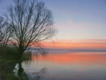 Sunrise at Lake Bolsena. A morning at the reed-covered Lago di Bolsena in central Italy Royalty Free Stock Image