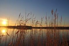 Sunrise at a lake royalty free stock image