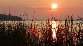 Sunrise on the  lake Royalty Free Stock Photography