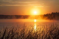 Sunrise on the lake. Early morning landscape. mist, forest silhouettes and rays of  rising sun. Royalty Free Stock Photo