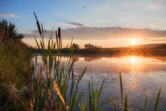 Sunrise on a lake Royalty Free Stock Photography