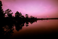 Sunrise at the lake. Forest asia morning Stock Photos
