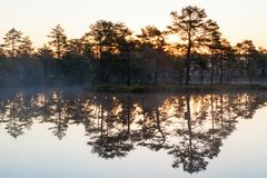 Sunrise at a lake Royalty Free Stock Photography
