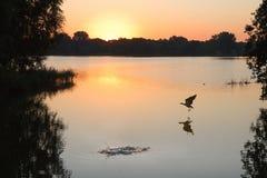 Sunrise at the lake with halo round Royalty Free Stock Image