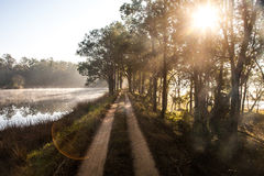 Sunrise by a lake in Kanha National Park, India Stock Photos