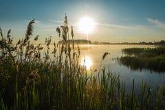 Sunrise on the lake. Royalty Free Stock Photos