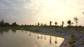 Sunrise at lake, man made water reservoir with rice field and palm trees background stock video footage