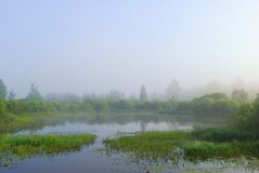 Sunrise on the lake Royalty Free Stock Photo