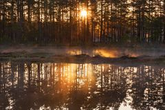Sunrise by the lake Royalty Free Stock Images