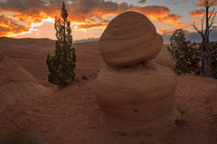 Sunrise landscape at a desert rock. Desert sunrise with an rock formation, Escalante, Utah, USA Stock Photo