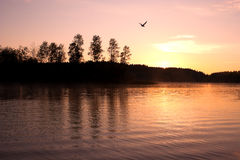 Lake Seliger. Sunrise landscape. Stock Photography