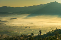 Sunrise landscape and the mist covering field at Phu Lang Ka,Thailand. Royalty Free Stock Photography