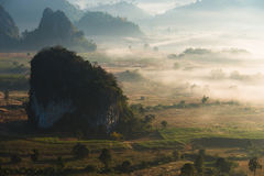 Sunrise landscape and the mist covering field at Phu Lang Ka,Thailand. Stock Image