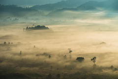 Sunrise landscape and the mist covering field at Phu Lang Ka,Thailand. Royalty Free Stock Photos