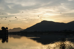 Sunrise. Landscape with mountain and birds Stock Photography