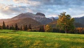 Sunrise landscape in mountain, Tatranska Javorina, Slovakia Stock Photography