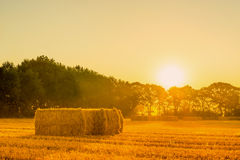Sunrise landscape with straw bales Stock Images